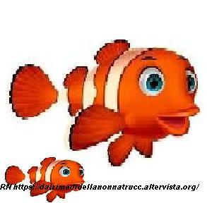 Consigli o trucchi sui pesci cura e pulizia