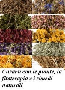 Curarsi con le piante, la fitoterapia e i rimedi naturali