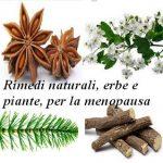 Rimedi naturali, erbe e piante per la menopausa