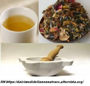 Le erbe medicinali e le preparazioni, per curarsi in maniera naturale