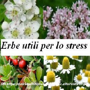 Erbe utili per lo stress