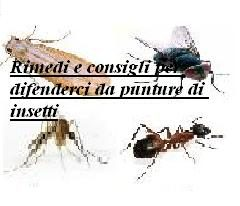 Rimedi e consigli per difenderci da punture di insetti