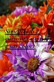 Significato e curiosità sui fiori e sui colori - Dai rimedi della nonna: truc...