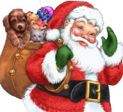 Storia Di Babbo Natale.La Vera Storia Di Babbo Natale Ecco Quelle Piu Conosciute