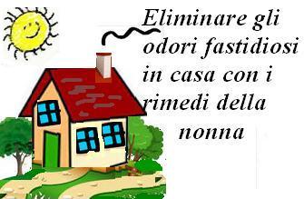 Come eliminare gli odori fastidiosi in casa - Eliminare gli odori in casa ...