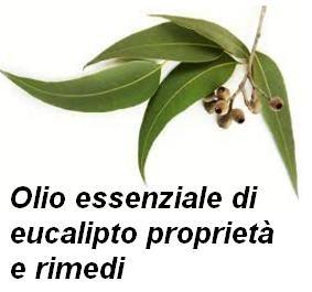 Olio essenziale di eucalipto proprietà e rimedi