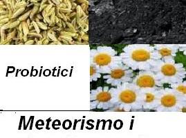 Meteorismo i rimedi naturali