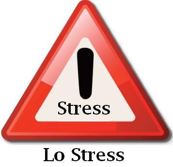 Lo Stress.