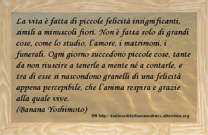 Frasi Matrimonioorg.Immagine Frase La Vita E Fatta Di Piccole Felicita Insignificanti