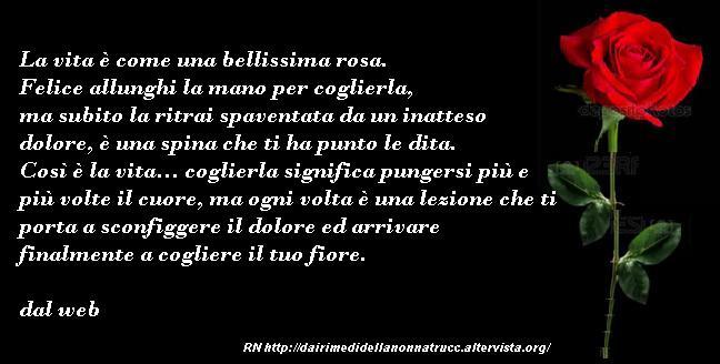 Immagine frase La vita è come una bellissima rosa...