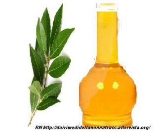 Olio essenziale di Alloro proprietà e rimedi