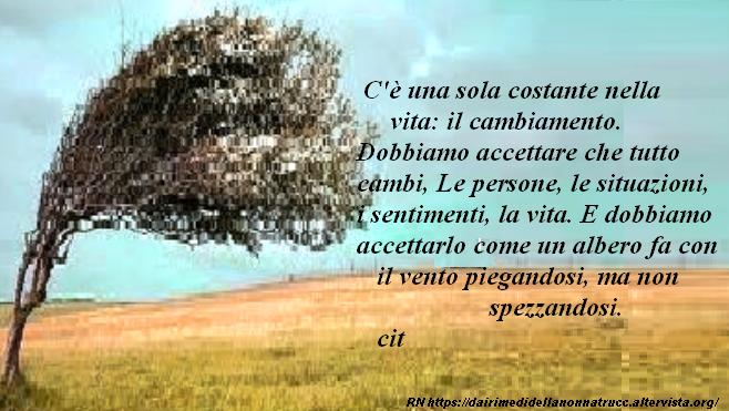 Immagine frase C'è una sola costante nella vita...