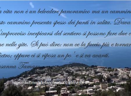 Immagine frase La vita non è….